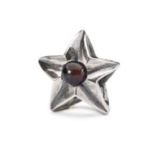 Aries Star