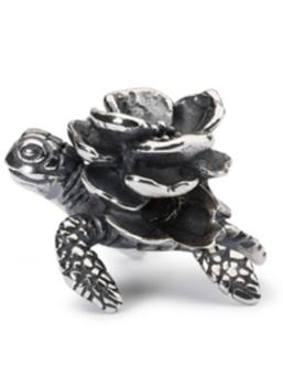 Turtle Flower